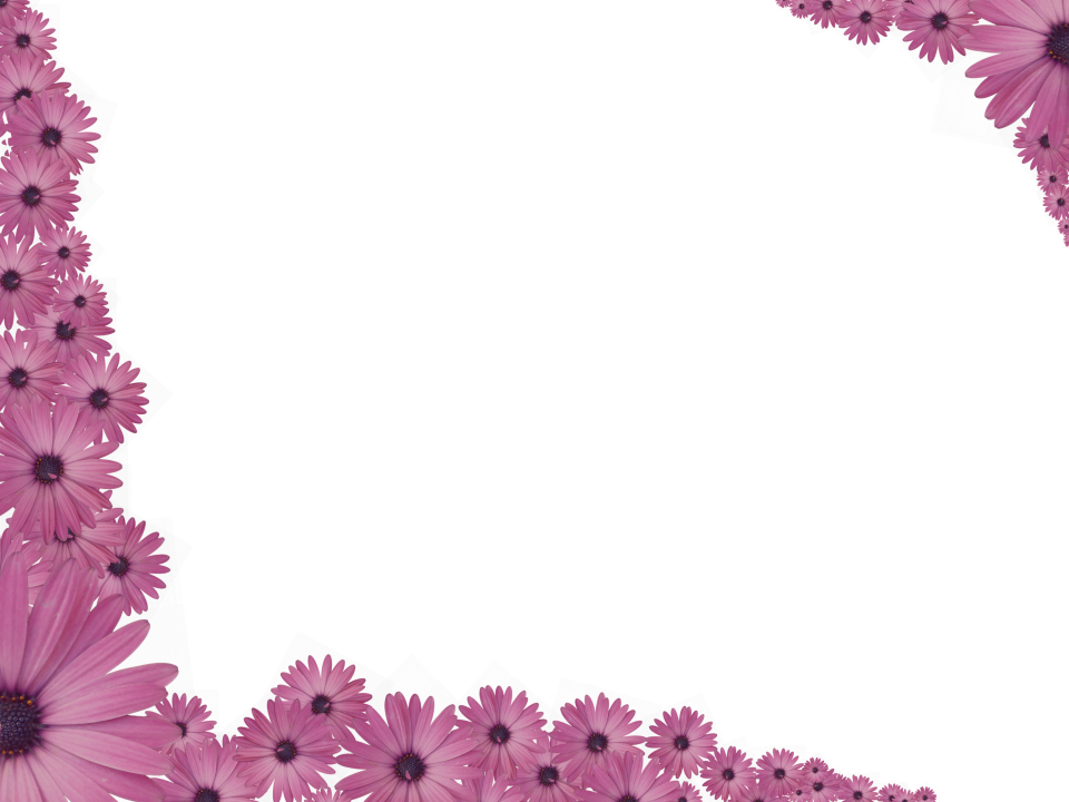 Bright Floral Corner Border In Pink Color Rectangular Perfect For Powerpoint
