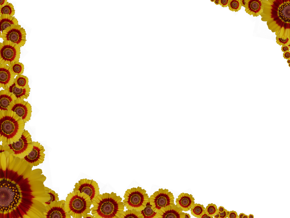 Flowery Sprinkle Rectangular Border in Red Yellow color, Powerpoint perfect for Border.png