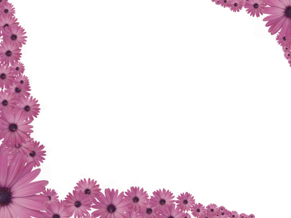 pink flowers sprinkled at corners of rectangular