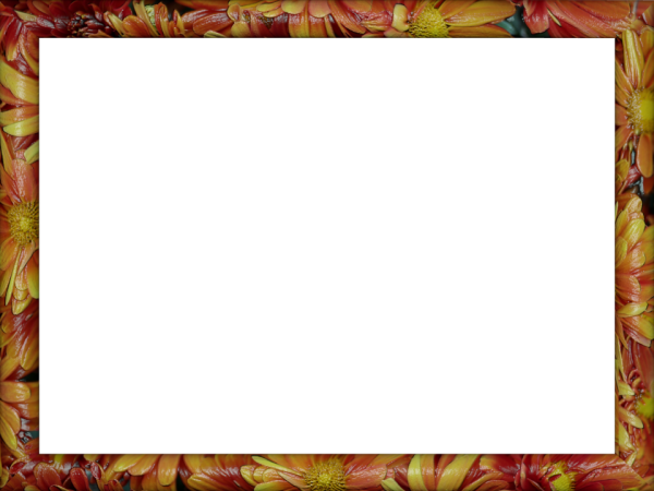 flowery Petals Ceramic Rectangular Border in Red Yellow color, Powerpoint perfect for Border.png