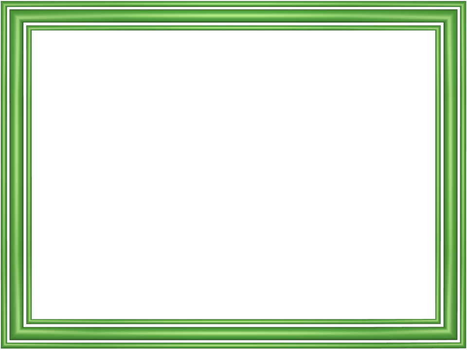 Elegant 3 separate bands border green