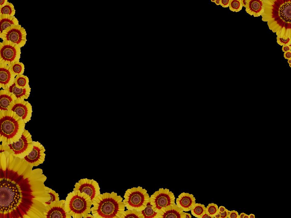 Floral Corner Border